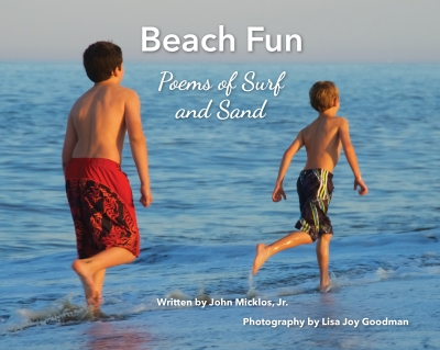 Beach Book cover